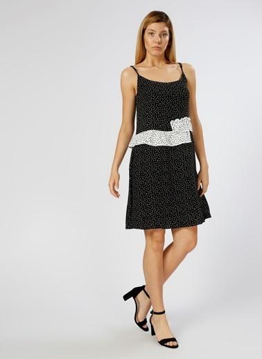 Black Pepper Elbise Renkli